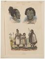Homo sapiens - Nieuw-Zeeland - 1700-1880 - Print - Iconographia Zoologica - Special Collections University of Amsterdam - UBA01 IZ19500064.tif