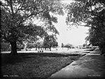 Hyde Park, Sydney (3003575163).jpg