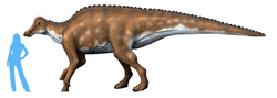 Hypracosaurus NT alternate.png