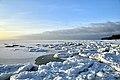 Ice off the coast in winter.jpg