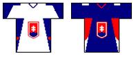 Icehockey Slovakia t-shirt.   PNG