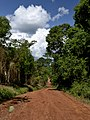 Iguazú, Misiónes, Argentina - panoramio (41).jpg