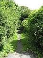 Incline Footpath, Saundersfoot - geograph.org.uk - 1413255.jpg