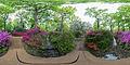 Isabella Plantation 1 360x180, London, UK - Diliff.jpg