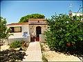 Isla de Armona (Portugal) (49673471123).jpg