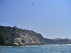 Ballestas Islands - Partial view of Ballesta Centro Island.