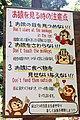 Iwatayama Monkey Park (3811349322).jpg