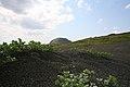 Iwo Jima veterans return to sacred ground 120314-M-VD755-176.jpg