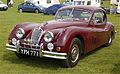 Jaguar XK 1955 - Flickr - mick - Lumix.jpg