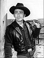 James Drury The Virginian.JPG