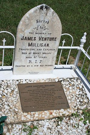 James Venture Mulligan - James Venture Mulligan's Grave in Mount Molloy Cemetery, 2010