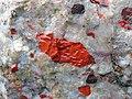 Jasper pebbles in quartzite (Lorrain Formation, Paleoproterozoic, ~2.3 Ga; Ottertail Lake Northeast roadcut, near Bruce Mines, Ontario, Canada) 36 (33831923528).jpg