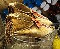Jicarilla Apache moccasins, c. 1880 - Bata Shoe Museum - DSC00498.JPG