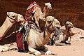 Jordan Petra (5575392628).jpg