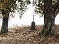 Jouy-en-Argonne (Meuse) croix de chemin.JPG