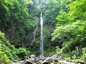 Jpn gifu gujyou amidagataki 20090527.jpg