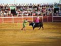 JuanJosePadilla-Arcos-Dsc03557.jpg