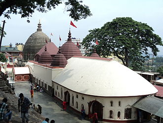 Yoni - 8th-century Kamakhya Temple, Guwahati Assam: its sanctum has no murti, but houses a rock with a yoni-shaped fissure with a natural water spring. It is a major Shaktism-tradition pilgrimage site.