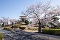 Kamine Park, Ibaraki 12.jpg