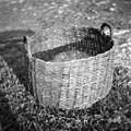 Kaneštra, košara za sadje, krompir in razne druge pridelke, Gabrk, pri Bariševih 1955.jpg