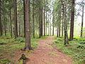 Kangasvuori nature trail 2.jpg