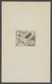 Kend - Print - Iconographia Zoologica - Special Collections University of Amsterdam - UBAINV0274 001 10 0042.tif