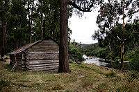 Kennedy's hut.jpg