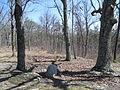 Kings Mountain National Military Park - South Carolina (8557801731) (2).jpg