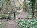 Kissing gate and footpath, Damerham - geograph.org.uk - 1757997.jpg