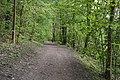 Klášter-Hradiště-nad-Jizerou-zelená-turistická-cesta-od-severu2019.jpg