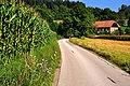 Klagenfurt Woelfnitz Emmersdorf Winklern Jungviehstall von 1959 02082009 66.jpg