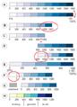 Kleurschemas in relatie tot dataset.PNG
