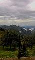 Kodaikanal hill top2.jpg