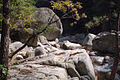 Korea-Gangwondo-Odaesan National Park 1536-07.JPG