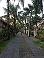 Kuta, Badung Regency, Bali, Indonesia - panoramio (10).jpg