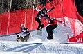 LG Snowboard FIS World Cup (5435318599).jpg