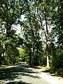 LHHV Field Trip to Gettysburg september 2016 - panoramio - Ron Shawley (190).jpg