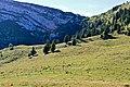 La Dôle - panoramio (17).jpg