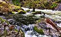 Lake Creek Falls (25281259669).jpg