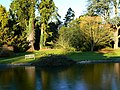 Lake and grounds, Westonbirt House, Tetbury - geograph.org.uk - 1105419.jpg
