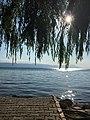Lake iznik.jpg