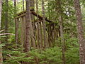 Lane County, Eugene, Oregon (14179205685).jpg