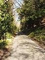 Lane by Pheasant's Hill - geograph.org.uk - 692241.jpg