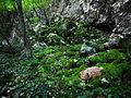 Lazarev kanjon 6.jpg