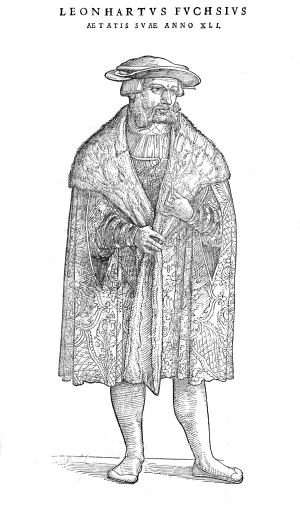 Leonhart Fuchs - From a woodcut by Veit Rudolph Speckle