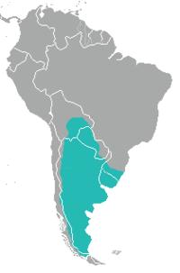 Leopardus geoffroyi range map