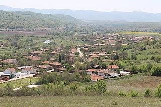 Näkymä Leshnikovon kylään /Wikipedia