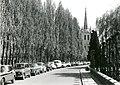 Leuven Pereboomstraat - 197585 - onroerenderfgoed.jpg