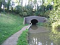 Light at the end of the tunnel, Newbold. - geograph.org.uk - 59375.jpg