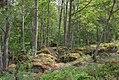 Linnés Hammarby - KMB - 16001000546973.jpg